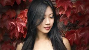 Картинка Азиатки Лист Брюнетка Волосы молодая женщина