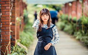 Фотографии Азиатка Смотрит Размытый фон девушка