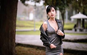 Фотография Азиаты Взгляд Платья Декольте девушка