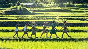 Фотографии Азиаты Трава Мальчики Гуляет Шляпа Дети