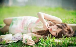 Фото Азиаты Траве Шатенка Размытый фон Рука Взгляд Лежит девушка