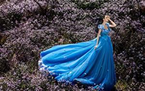 Картинка Азиатки Траве Платье Синий девушка