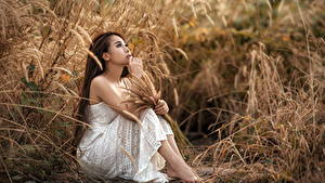 Фотографии Азиатки Трава Сидящие Платье Руки Шатенки девушка