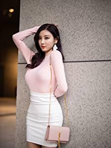Фотография Азиатка Сумка Брюнеток Поза Руки Юбки Yang Chen Chen молодая женщина