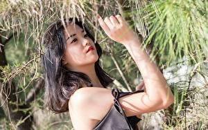 Фотографии Азиатки Рука Брюнетки девушка