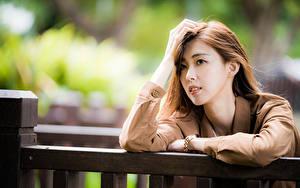 Картинка Азиаты Руки Волосы Взгляд Размытый фон молодые женщины