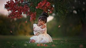 Обои Азиатки Девочки На ветке Траве Платье Брюнеток Дети