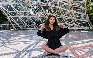 Картинка Азиатки Поза лотоса Сидит Смотрит Шатенка молодые женщины