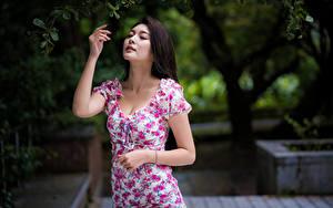 Картинки Азиаты Позирует Платье Рука Ветвь Девушки