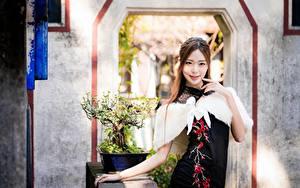 Фотография Азиатки Позирует Платье Рука Улыбка Смотрит