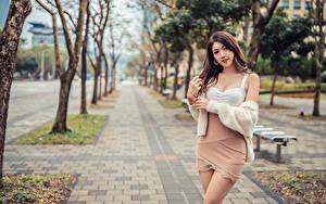 Картинка Азиаты Позирует Взгляд Боке молодые женщины