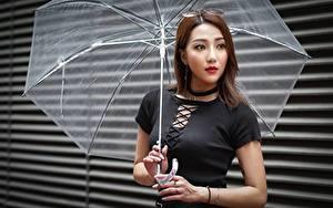 Фотография Азиаты Поза Рука Зонтом Шатенки молодая женщина