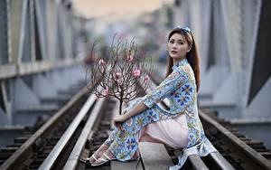 Фото Азиатка Поза Рельсах Платья Взгляд Ветки Боке девушка