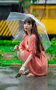 Фото Азиатки Поза Сидящие Зонтом Платья Взгляд Девушки