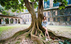 Фотография Азиатка Поза Дерева Ноги Смотрят молодая женщина
