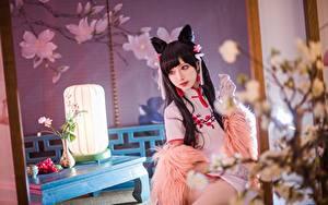 Картинки Азиатки Боке Брюнетка Сидящие Смотрят Косплей Японские Shika Cosplay девушка