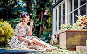 Обои Азиаты Сидя Платье Ноги Взгляд Размытый фон девушка