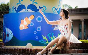 Фотографии Азиаты Сидит Платье Ноги Руки молодая женщина