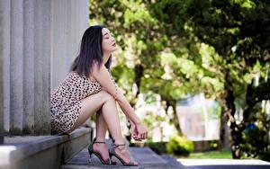 Фотография Азиатки Сидя Ноги Платье молодые женщины