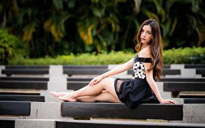 Картинка Азиатки Сидящие Ноги Смотрит Размытый фон Шатенка Девушки
