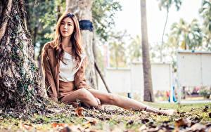 Фотографии Азиатка Сидит Позирует Листья Размытый фон Смотрят молодые женщины