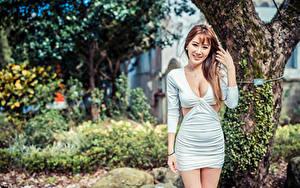 Картинка Азиатки Улыбается Платье Вырез на платье Размытый фон Шатенка