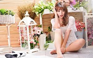 Обои Азиатки Туфель Ног Сидящие Позирует Шатенки Смотрит Миленькие девушка