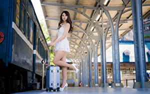 Картинка Азиаты Чемоданом Платье Ног Поза молодая женщина