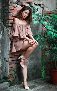 Фотографии Азиатки Стенка Поза Ног Платья Взгляд девушка