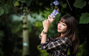 Картинка Азиаты Наручные часы Боке Шатенка Руки Взгляд Девушки