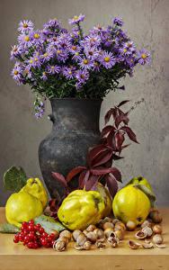Фото Астры Орехи Натюрморт Ваза Цветы Еда