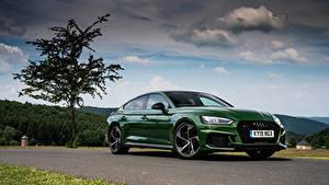 Фото Ауди Зеленая Металлик 2019 RS 5 Sportback авто