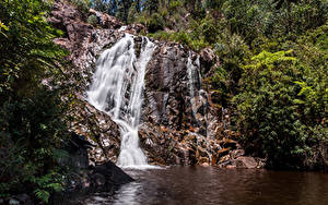 Обои Австралия Мельбурн Парк Водопады Утес Природа
