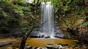 Картинки Австралия Водопады Камни Скале Ствол дерева Мхом Morton National Park Природа