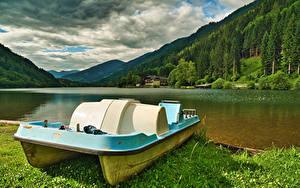 Фото Австрия Гора Леса Озеро Carinthia, small catamaran