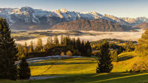 Фото Австрия Горы Луга Альп Ель Туман Природа