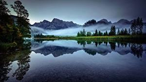 Фотографии Австрия Гора Озеро Утро Тумане Альп Lake Almsee