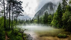 Фотографии Австрия Горы Озеро Дерева Тумана Obertraun