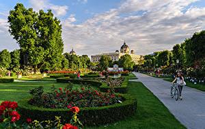Обои Австрия Вена Парк Газоне Кустов Дизайна Дерево Уличные фонари BlumenPark Природа