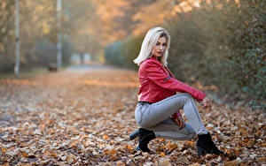 Фото Осень Блондинки Куртки Джинсы Позирует Листья Смотрят Alessandra молодая женщина