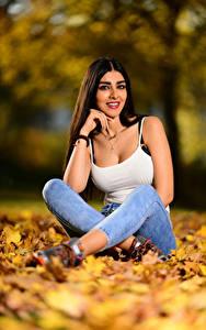 Картинки Осень Брюнетки Листья Сидит Майки Джинсов Улыбка Смотрят Боке Anita молодая женщина Природа