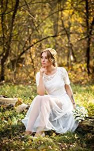 Картинки Осень Букет Траве Листва Платья Сидя Невесты