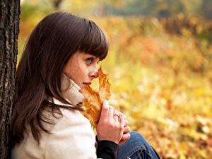 Фото Осень Шатенка Размытый фон Лист Взгляд Рука Девушки