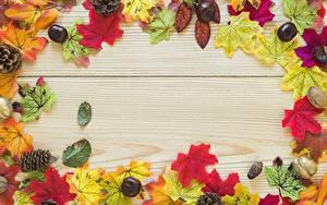 Картинка Осенние Каштан Клён Листва Шишки Жёлудь Доски Шаблон поздравительной открытки