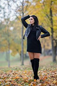 Картинка Осень Брюнетка Листва Поза Руки Куртки Ног Сапогах Denise Jakueline молодые женщины