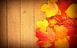 Картинка Осень Лист Доски Природа