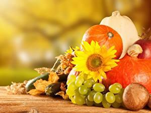 Обои Осень Виноград Тыква Подсолнухи Овощи