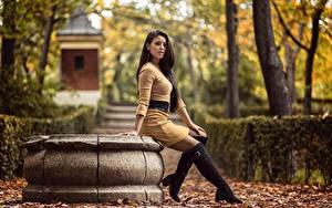 Фото Осенние Листва Сидит Сапогов Ног Платье Взгляд Lorena Девушки