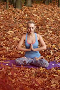 Фото Осень Поза лотоса Блондинки Сидит Йога Девушки