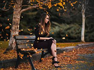 Обои Осень Парки Скамейка Шатенки Сидит Листья девушка